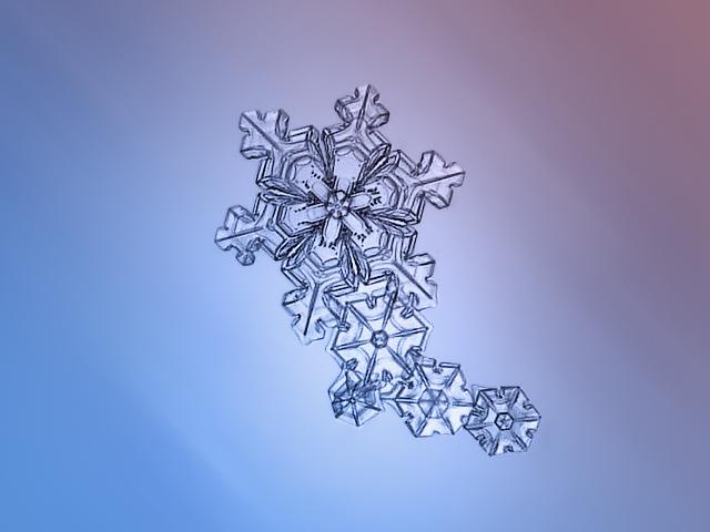 Sneeuwkristallen