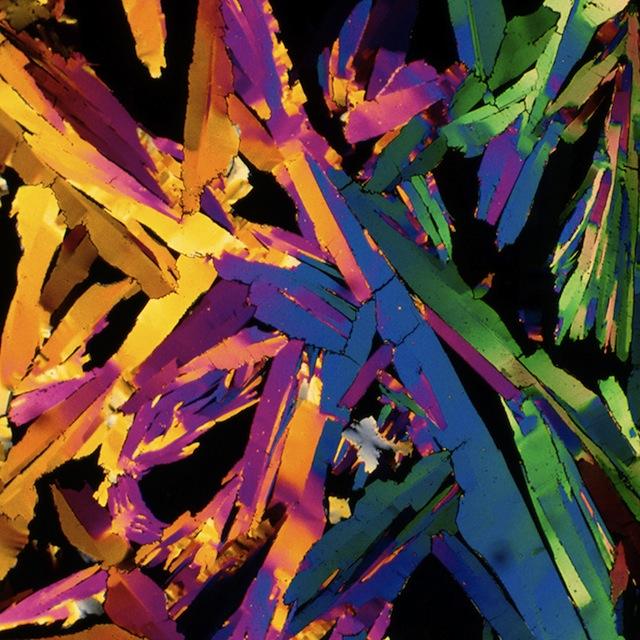 Sinaasappelsap onder een microscoop