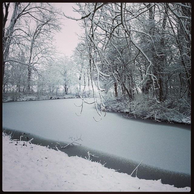 Riviersneeuw