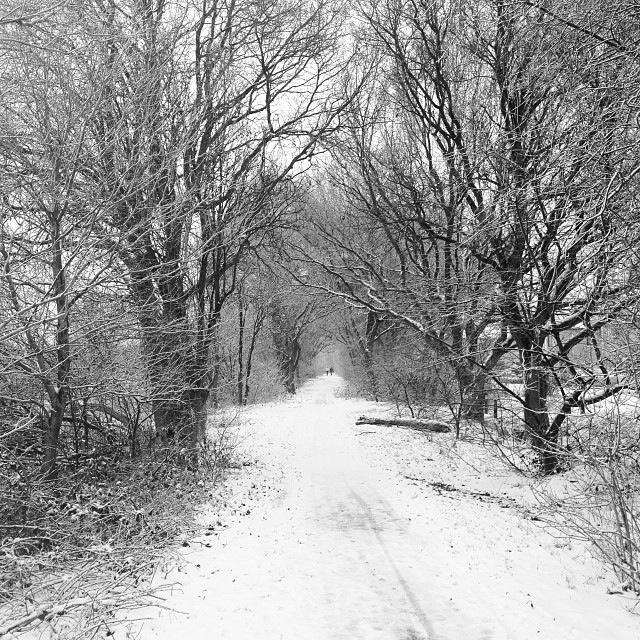 Sneeuw op pad