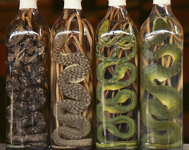 slangenwijn